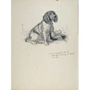 Sitting Still Dog Hound Pet Animal Sketch Etching Art Home & Kitchen