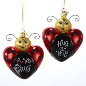 Club Pack of 12 Tween Christmas Love Bug Glass Ornaments 3