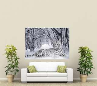 White Tiger Snow GIANT POSTER PRINT X1782