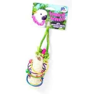 Pet Products Tropical Teasers Rings of Fire Bird Toy Pet Supplies
