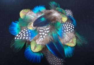 PLUMAGE MIX #2 BLUE GREEN GOLD PEACOCK GUINEA FEATHERS