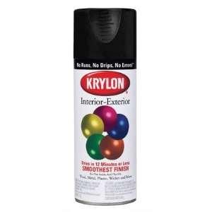 Flat Black Interior & Exterior Decorator Spray Paint 5160