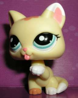Littlest pet shop New yellow playful cat kitten #1821