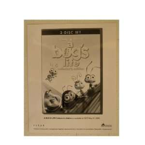 A Bugs Life Press Kit And Photo Bugs Disney Pixar