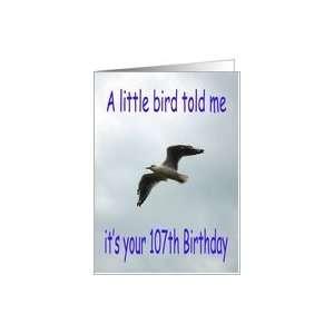Happy 107th Birthday Flying Seagull bird Card Toys