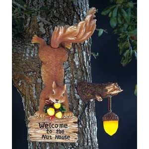 Squirrel Tree Mount Welcome To The Nut House, Solar