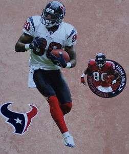 Andre Johnson Mini FATHEAD Houston NFL + Texans Logo Official Wall