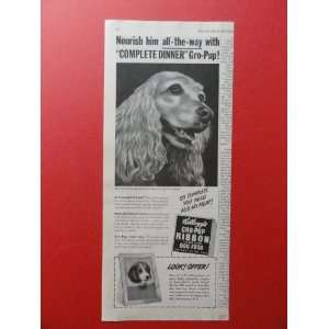 Kelloggs Gro Pup Ribbon Dog Food.1950 print ad (English