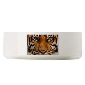Large Dog Cat Food Water Bowl Sumatran Tiger Face