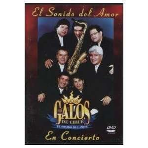 El Sonido Del Amor En Concierto: LOS GALOS: Movies & TV