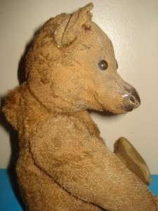 Very Old Dark Brown Mohair Early Steiff Teddy Bear   Humped Back needs